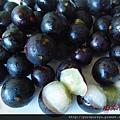 樹葡萄蘋果汁5.JPG