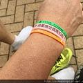 2015葫蘆墩全國馬拉松18.JPG