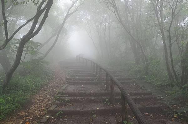 yahiko_028.jpg