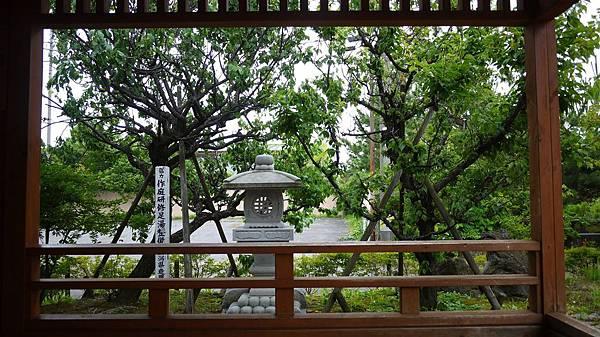 tsukioka_021.jpg
