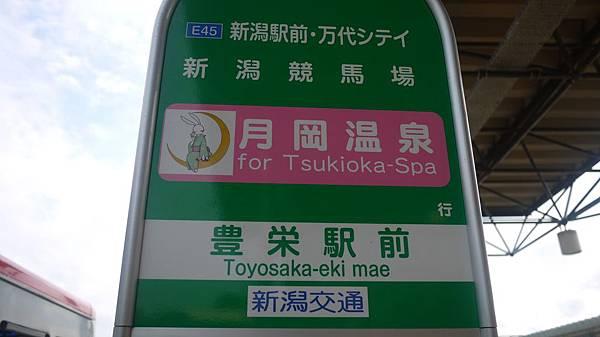 tsukioka_043.jpg