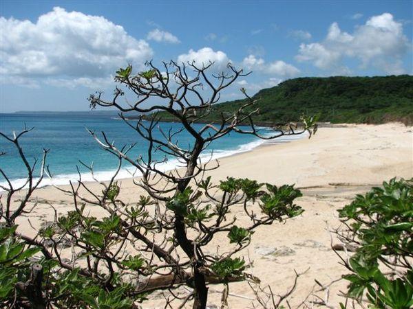 06砂島 (6).JPG