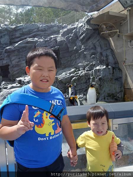 旭山動物園2014.8.26