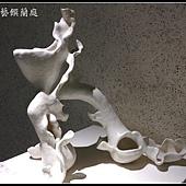 IMAG0753_副本