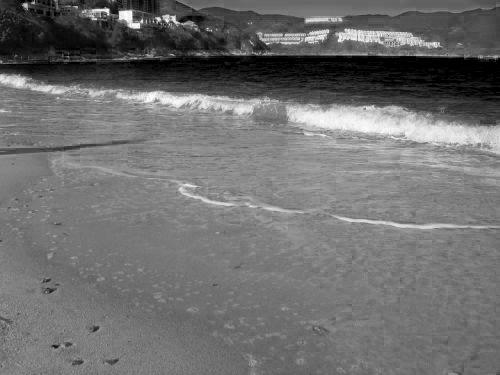 (轉自網路)ele_beach-q1-1.jpg