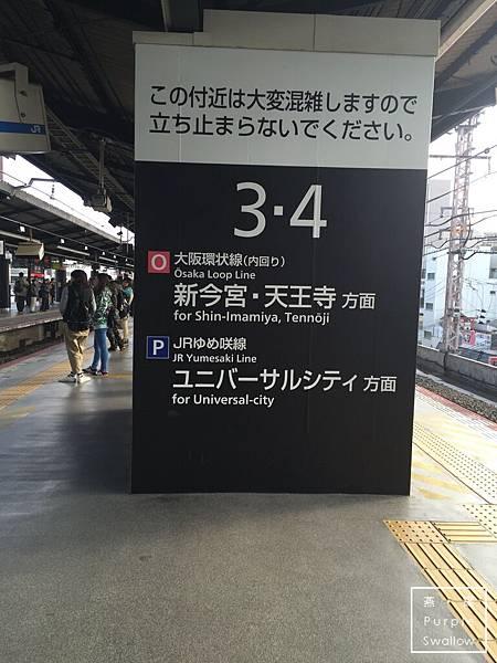 IMG_7388.JPG