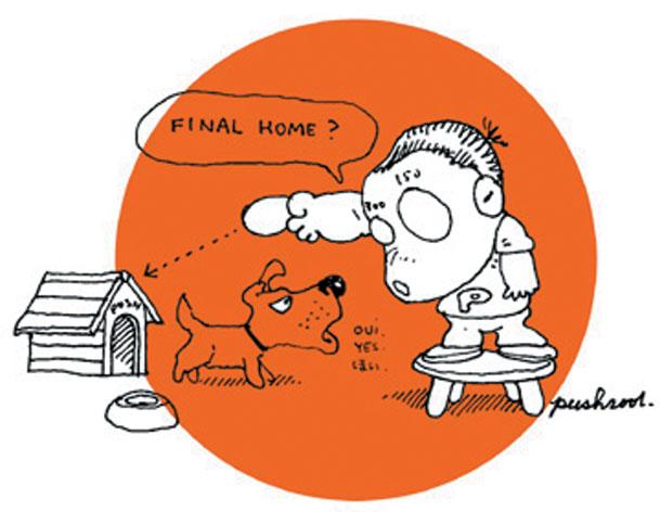 018-FINAL HOME.jpg