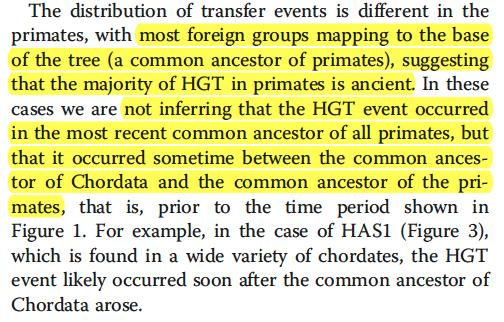 primate HGT