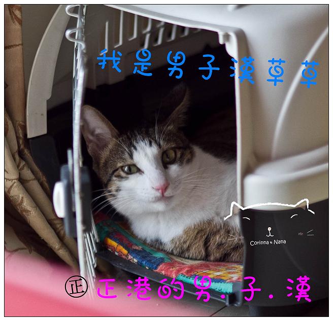 IMG_8798.jpg