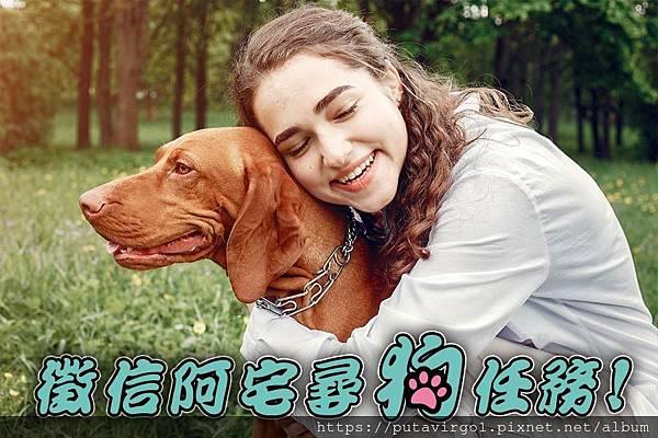 22徵信阿宅尋狗任務---尋狗找狗.jpg