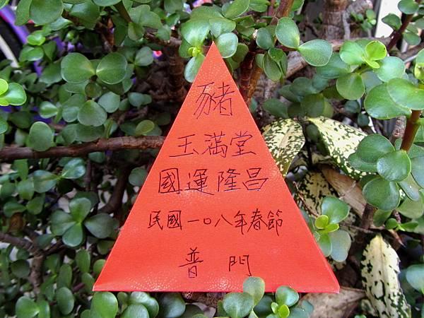 IMG_4197-豬玉滿堂立體紅包.jpg