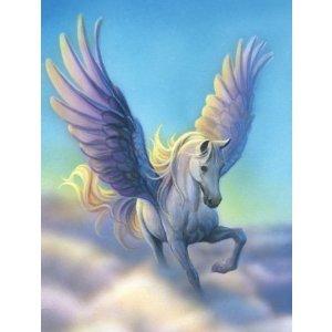mb-Pegasus 2.jpg