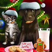For Santa Only