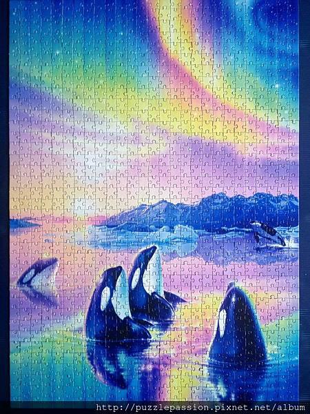 Whale_完成圖.JPG