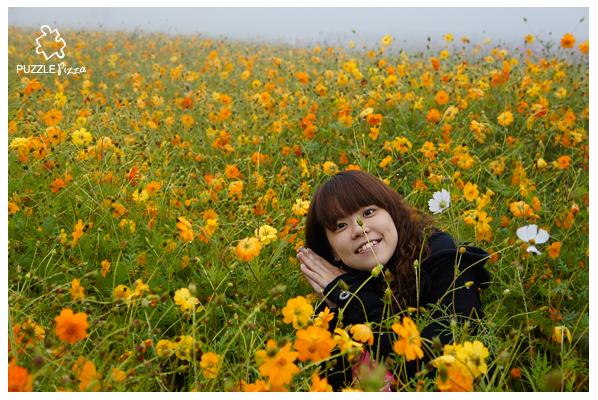 1106_花海_08.jpg