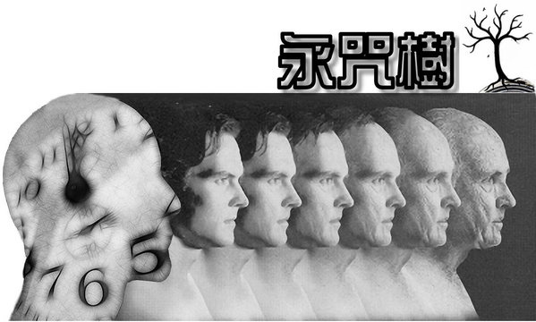1557a68296f24d-永咒樹01-1_jpg.jpg