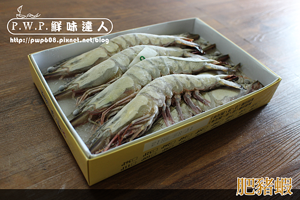 肥豬蝦 (6).png