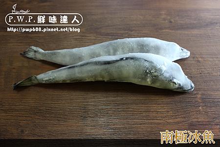 冰魚 (15).png