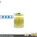 小冰燕 (4).png