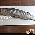 野生烏魚 (1) II.png