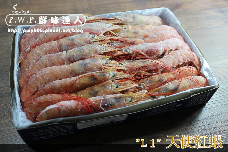 天使紅蝦L1 (1).png
