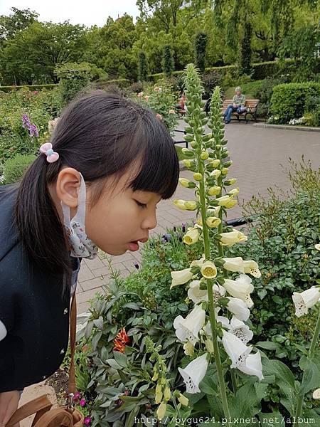 Day 2山下公園&冰川丸郵輪博物館_180430_0079.jpg