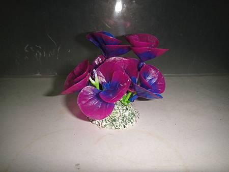 造景紫花朵