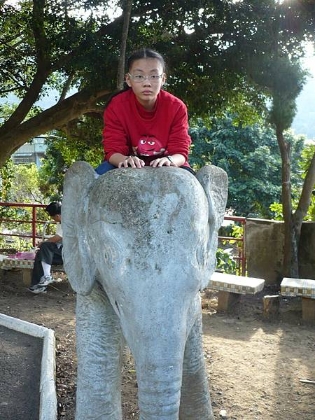 我在騎大象.jpg