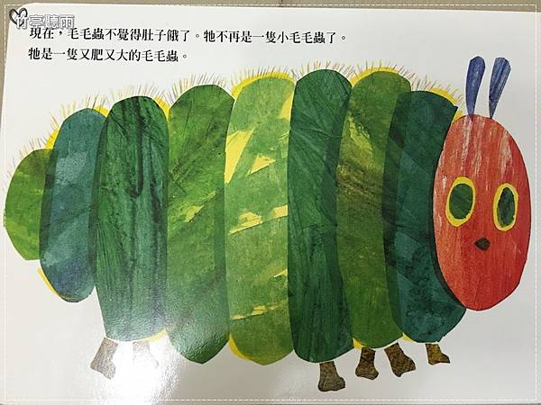 毛毛蟲006.JPG