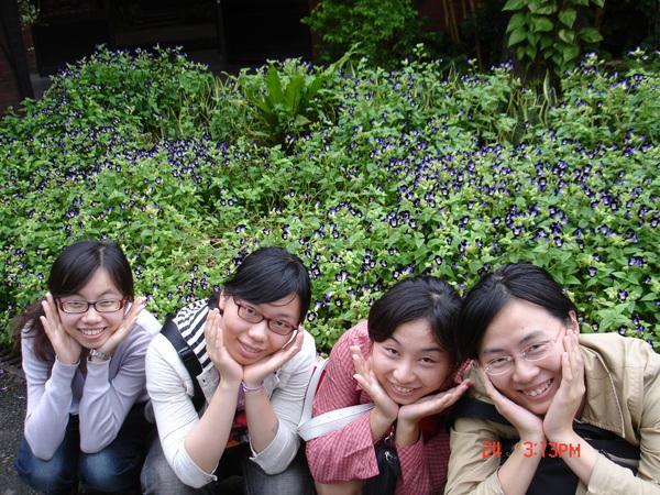 真正的四朵花