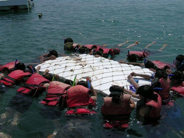 第二項是浮潛,不過頂多是趴在浮板上拿魚肉餵魚
