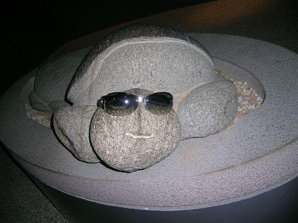 望安綠蠵龜保育中心的~~~~外星龜
