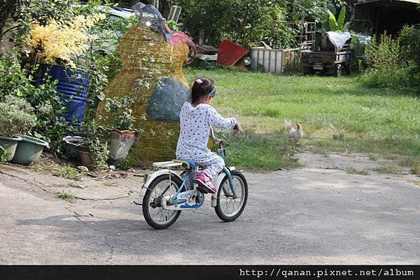 愛上更大台--腳踏車