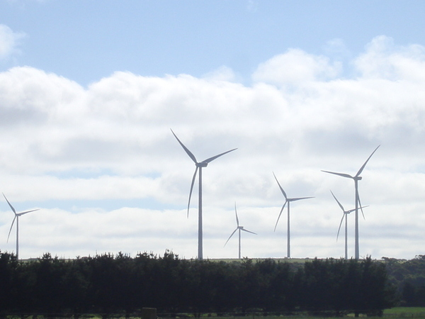 Woolnorth Windfarm