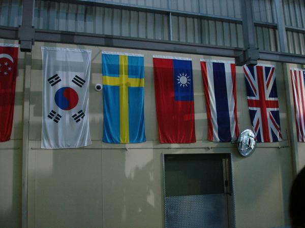 看到故鄉的國旗