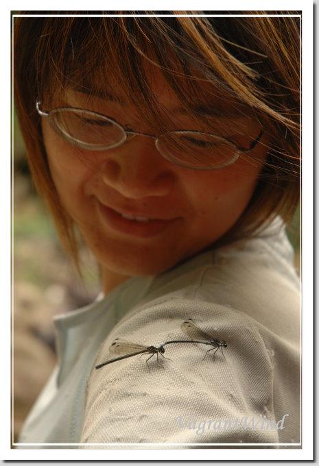 20070512--三棧北溪-禹竹-豆娘
