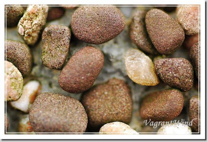 20051126--磺嘴榮潤-洗石子