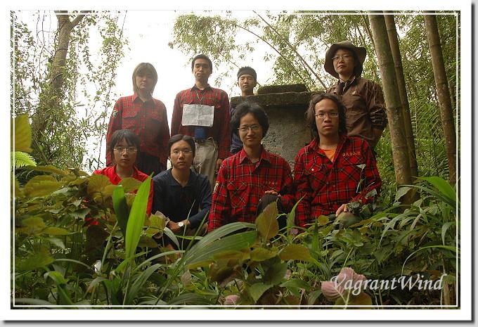 20070429--古白楊