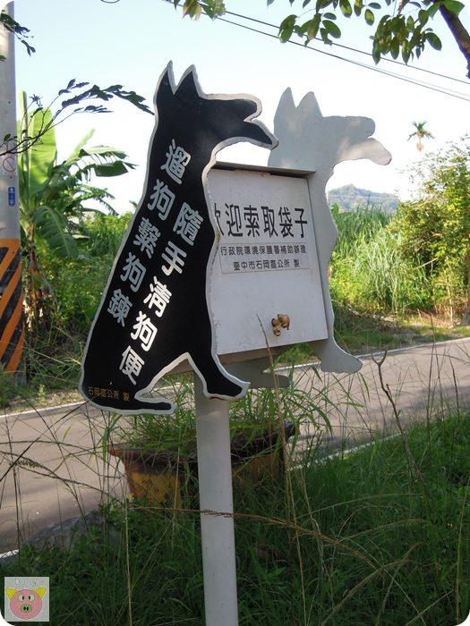 東豐DSCN5893.JPG