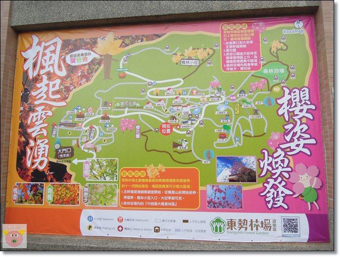 東勢林場097.JPG