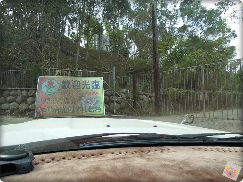 本草奇露營004.JPG