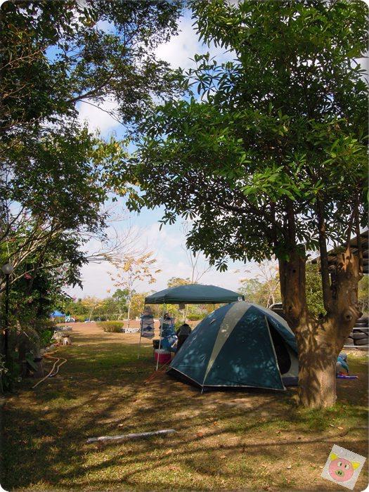 本草奇露營020.JPG