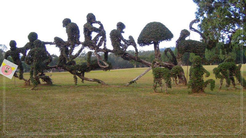 印地安露營107.JPG