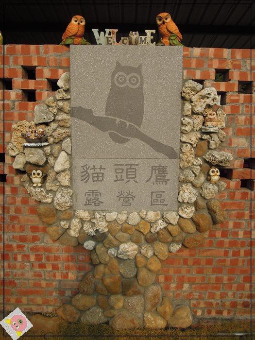 貓頭鷹露營001.JPG