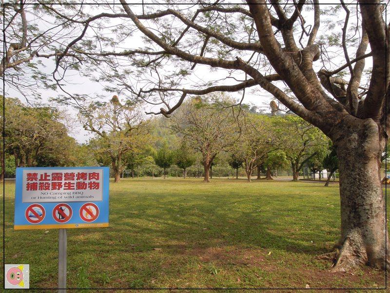 曾文青年活動中心露營083.JPG