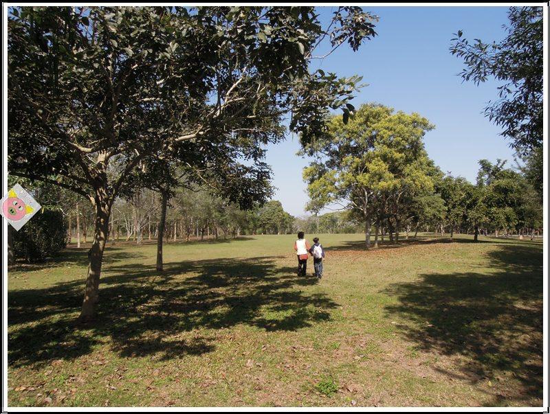 草湳濕地農場露營040.JPG