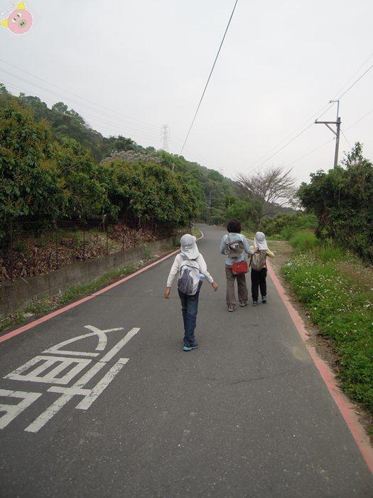 橫山仙境露營087.JPG