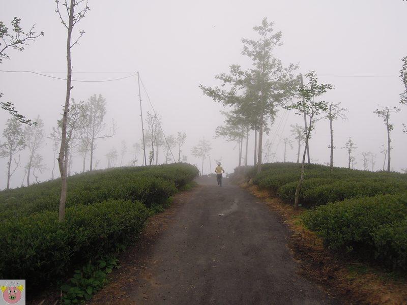 文景露營146.JPG