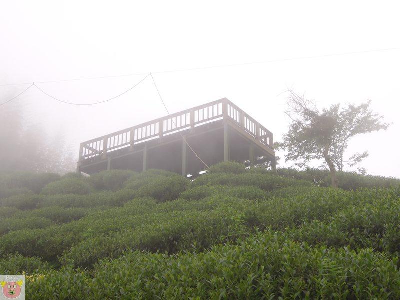 文景露營157.JPG