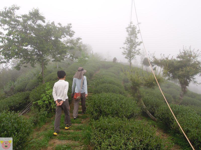 文景露營158.JPG